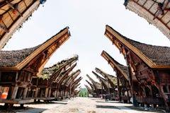 传统塔娜Toraja村庄大街有水牛的在前景, tongkonan房子 Patawa,苏拉威西岛,印度尼西亚 免版税库存图片