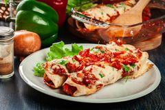 传统墨西哥辣酱玉米饼馅用鸡肉、辣西红柿酱和乳酪在板材 免版税库存照片