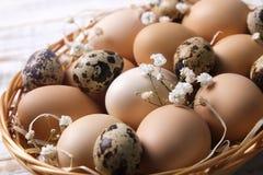 传统复活节卡片模板用在柳条筐的没有漆的混杂的有机鸡蛋与干草和装饰野花 库存图片