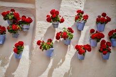 传统安达卢西亚的墙壁 库存照片