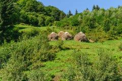 传统干草堆、青山和绿色森林 库存图片