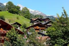 传统建筑学可看见在绿地中 库存照片