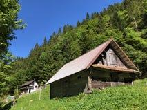传统建筑学和农舍在Wagital或Waegital谷和由高山湖瓦吉塔莱尔湖Waegitalersee 免版税图库摄影