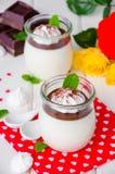 传统意大利点心panna陶砖用巧克力汁和酥脆蛋白甜饼 免版税库存图片