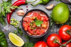 传统拉丁美洲的墨西哥辣调味汁调味汁 免版税库存图片