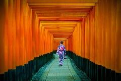 传统日本和服的亚裔妇女在Fushimi Inari在京都,日本祀奉 免版税库存照片