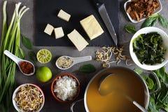传统日本大酱汤的成份 免版税图库摄影