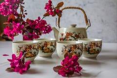 传统日本茶具充满绿茶和新鲜的红色爽快开花反对白色大理石后面 库存照片