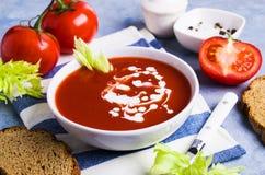 传统汤的蕃茄 免版税库存图片