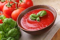 传统汤的蕃茄 库存图片