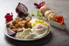 传统罗马尼亚食物` Tochitura Moldoveneasca ` 免版税库存照片