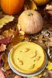传统美国南瓜自创蛋糕,装饰用在南瓜和秋叶背景的曲奇饼  库存图片