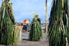 传统舞蹈屏蔽节日巴布亚新几内亚 免版税图库摄影