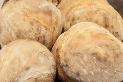 传统葡萄牙家制面包 库存图片
