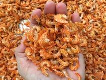 传统越南烹调:干虾 免版税库存照片