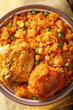 传统辣巴西食物:在a的鸡肉和大米特写镜头 免版税库存图片