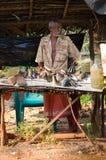 传统鱼lankian市场开放的sri 免版税库存图片