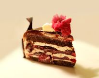 传统黑森林分层了堆积与红色装饰和樱桃的巧克力蛋糕切片 库存图片
