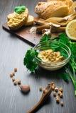 传统Hummus或houmous,开胃菜由与tahini,柠檬,大蒜,橄榄油,荷兰芹,小茴香的被捣碎的鸡豆制成 库存图片