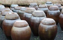 传统kimchi韩文的罐 库存照片