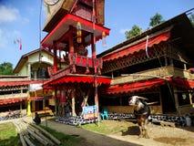 传统Toraja葬礼, Rantepao,塞利比斯,印度尼西亚 库存照片