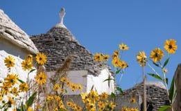 传统trulli房子看法在阿尔贝罗贝洛,普利亚意大利艾阿Piccola住宅区Itria谷的 免版税库存照片