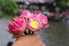 传统上是被熔铸的莲花 免版税库存图片