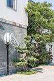 传说上有名大厦和街灯 免版税库存照片