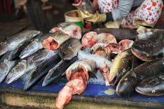 传统亚洲鱼市 库存图片
