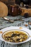 传统俄国圆白菜汤shchi用蘑菇 库存图片