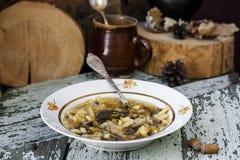 传统俄国圆白菜汤shchi用蘑菇 库存照片