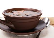 传统俄国肉汤和咸黄瓜 免版税库存图片