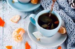 传统冬天饮料茶用薄菏和蜜桔 免版税图库摄影