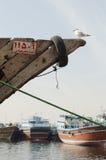 传统单桅三角帆船小船在有海鸥的迪拜Creek迪拜停泊了  免版税库存图片