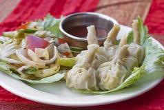 传统印地安食物粤式点心饺子 免版税库存照片