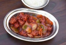 传统印地安食物辣椒鸡 库存照片