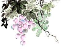 传统古老中国手画果子,葡萄 库存照片