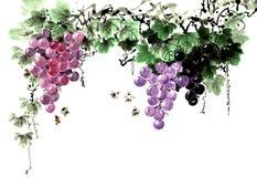 传统古老中国手画果子,葡萄 免版税库存图片