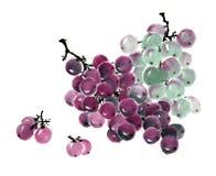 传统古老中国手画果子,葡萄 库存图片