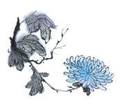 传统古老中国手画菊花 免版税图库摄影