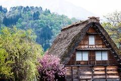 传统和历史日本村庄Ogimachi -白川町去,日本 图库摄影