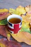 传统在秋天背景的下午英国茶 免版税库存照片