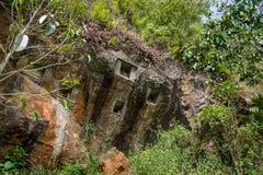 传统洞坟墓在岩石雕刻了在Lemo 塔娜Toraja,南苏拉威西岛,印度尼西亚 图库摄影