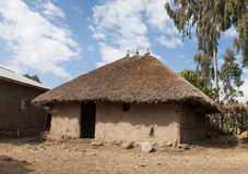 传统埃赛俄比亚的房子 免版税库存照片