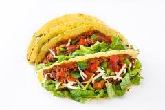 传统墨西哥炸玉米饼用肉和菜,被隔绝 库存照片