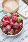传统复活节彩蛋 库存照片