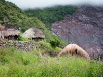 传统小屋在村庄 新几内亚 免版税库存照片