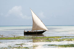 传统小船在桑给巴尔 免版税库存照片
