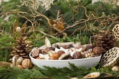 传统德国圣诞节曲奇饼 免版税图库摄影
