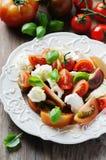 传统意大利开胃小菜caprese用无盐干酪 库存照片